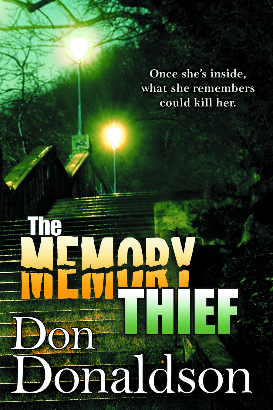 Don Donaldson Books The Memory Thief