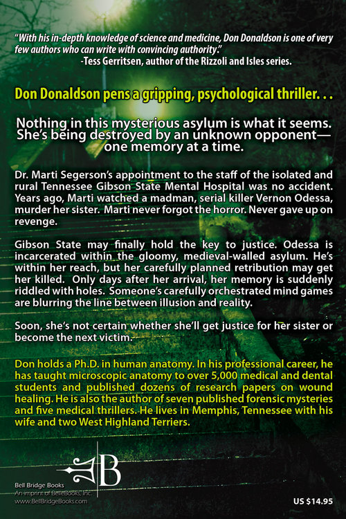 The Memory Thief   back cover PROOF